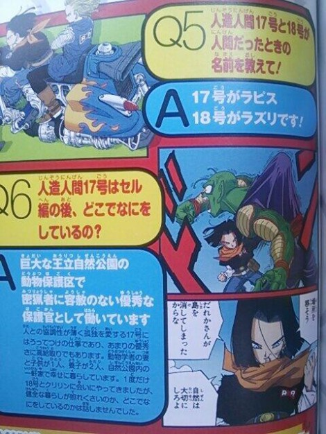 los_nombres_de_los_androides_no.17_y_no.18_revelados_por_akira_toriyama_dream_clowd_anime_dragon_ball_z